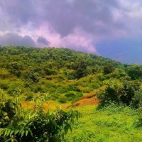 Chasing rain in Jharkhand: A Photo Essay