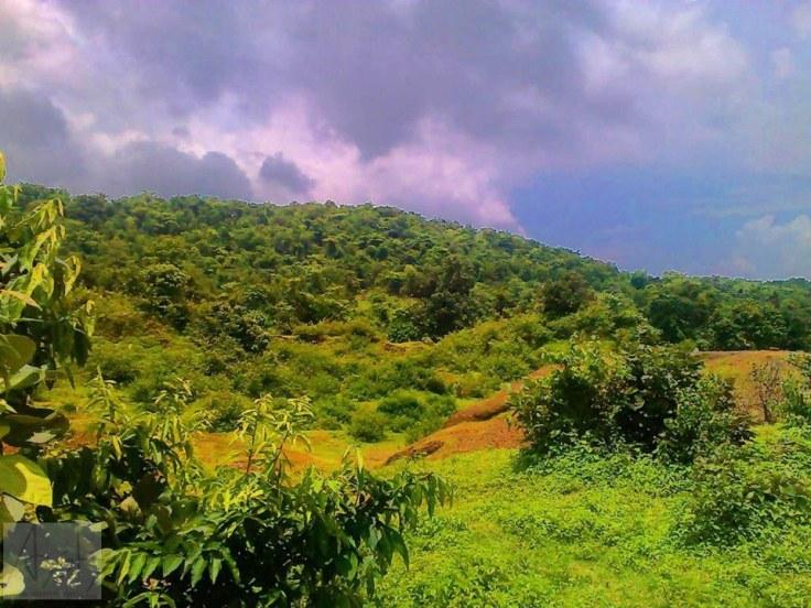 1 jharkhand rain