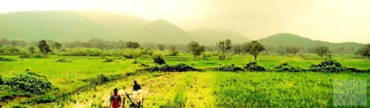 2 jharkhand