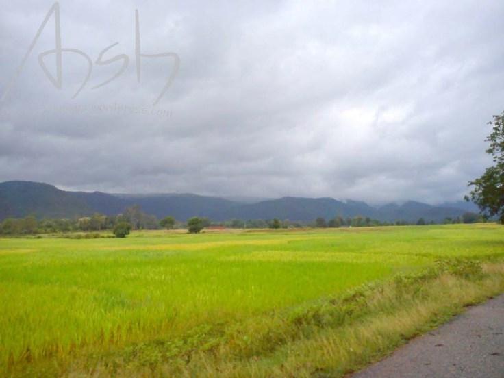 24 Jharkhand