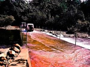 Doodhsagar falls Goa 2