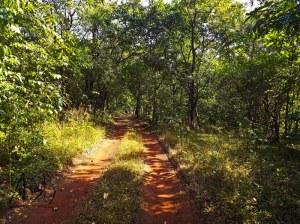 Goa Western Ghats