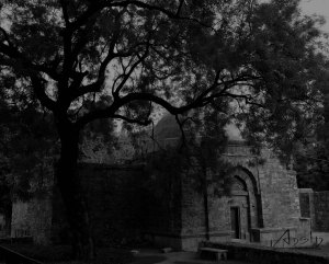 Hauz Khas village fort