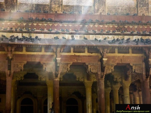 Amrt Fort Jaipur