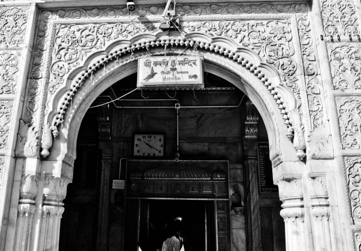 Bikaner Backpacking  (3)