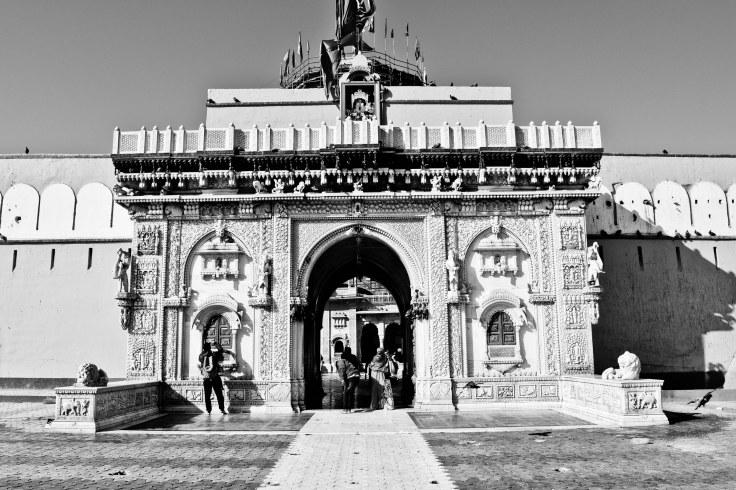 Karni mata temple  (1)