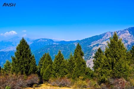 Prashar Lake trek Winter