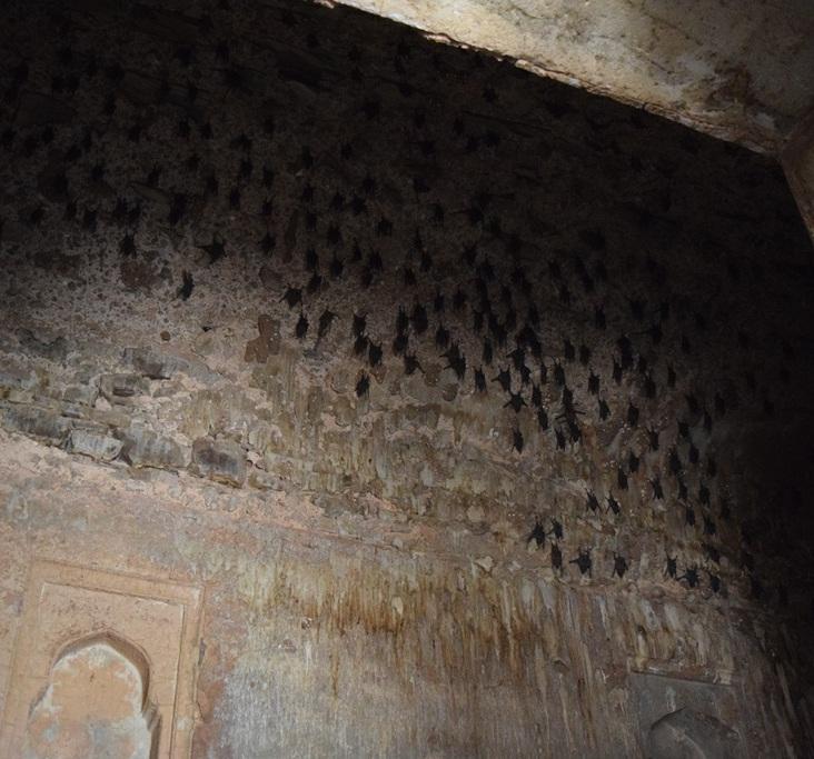 haunted-bhangarh-ghosts