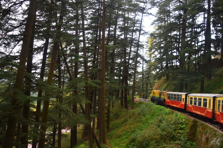 shimla-toy-train-2