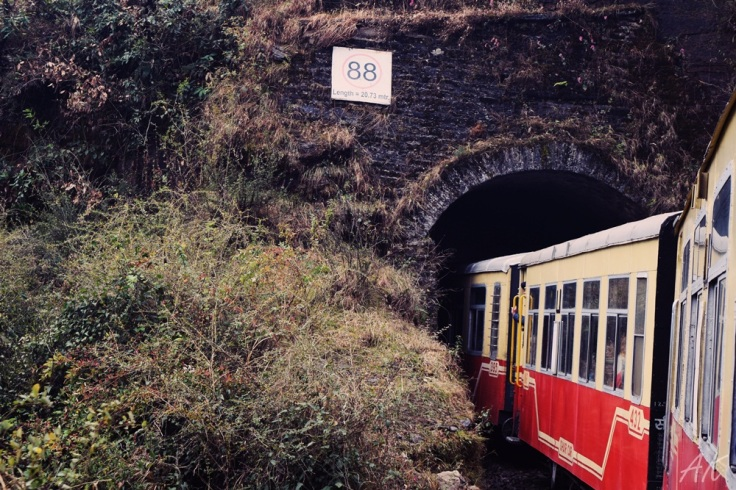 toy-train-experience