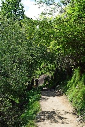 kheerganga-route