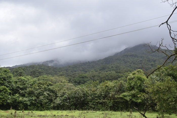 Goa Monsoon trek