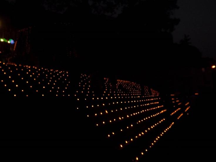 Dev Diwali banaras