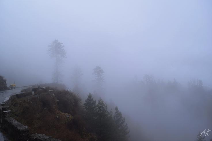 Shimla trekking