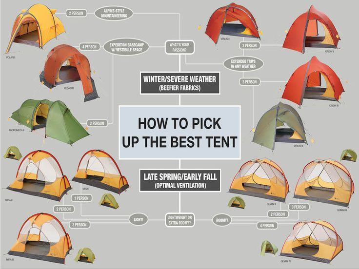 Camping infographic blog