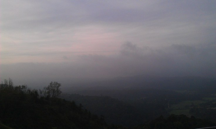 coorg24