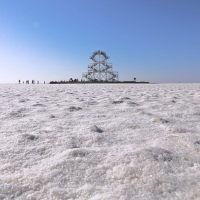 Why White Rann of Kutch is an ideal Winter Destination