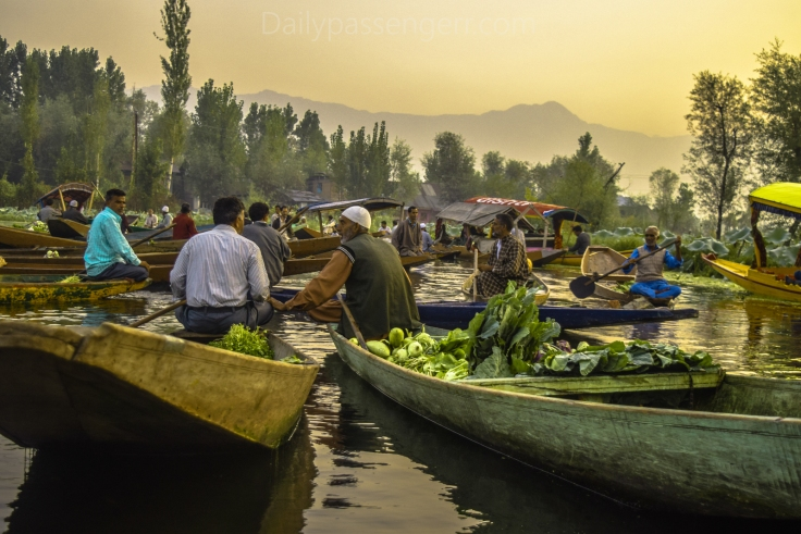 Srinagar portraits (11 of 11)
