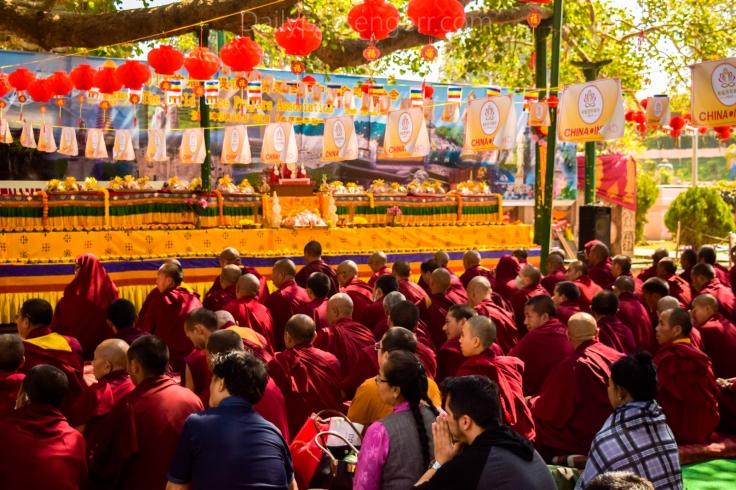 Bodh Gaya Festival (9)