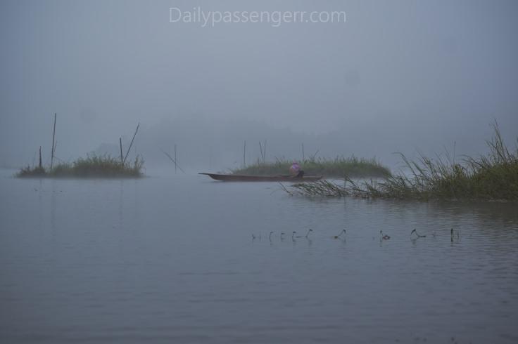 Loktak Lake Manipur (24)