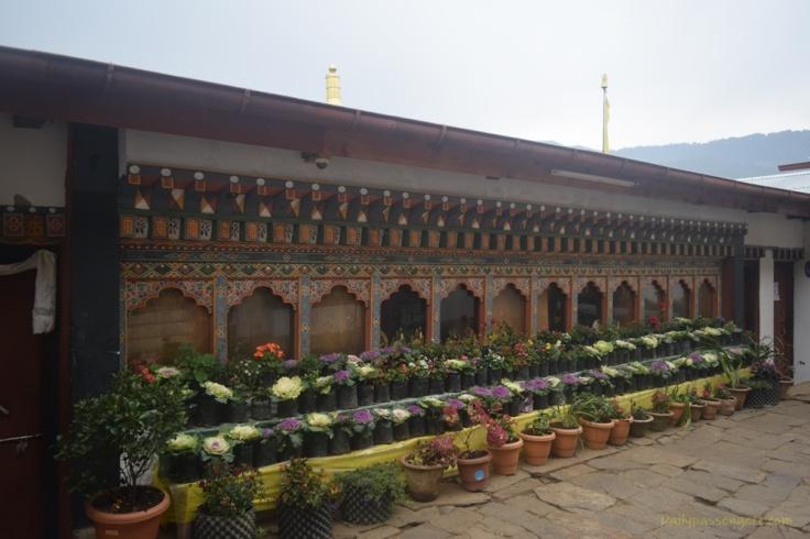 Penis murals Punakha (1)