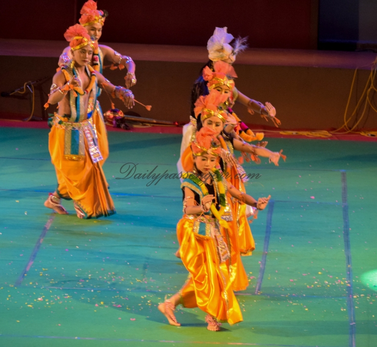 Sangai Festival manipur (3)