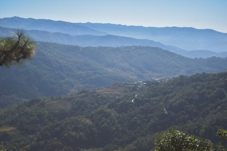 Dzukou Valley Nagaland (2)