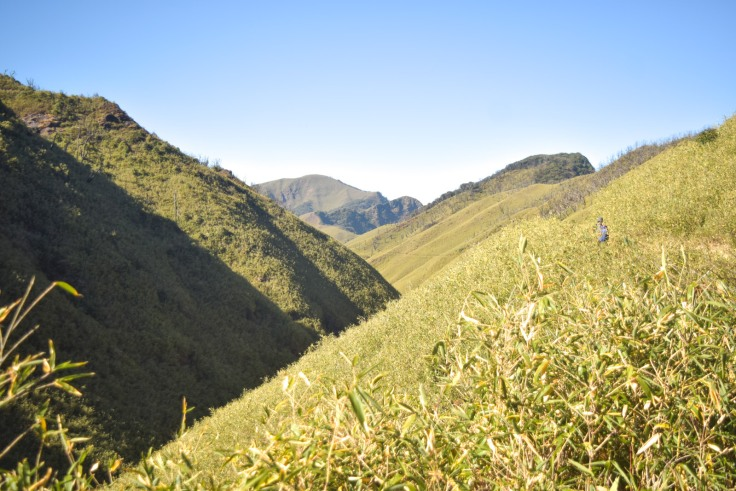 Dzukou Valley Nagaland (5)