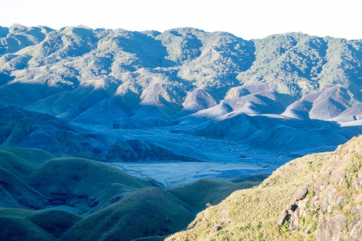 Dzukou Valley Nagaland (9)