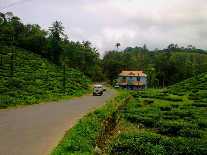 Wayanad stay options